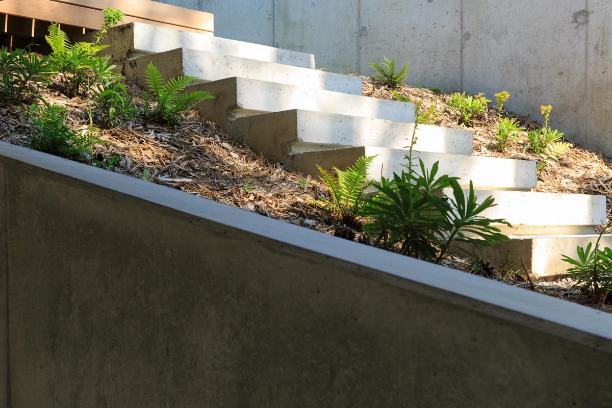 MTE_Dank-Architectes-maison-beton-brute-contemporaine-caluire-et-cuire_exterieur-marches-beton-brute
