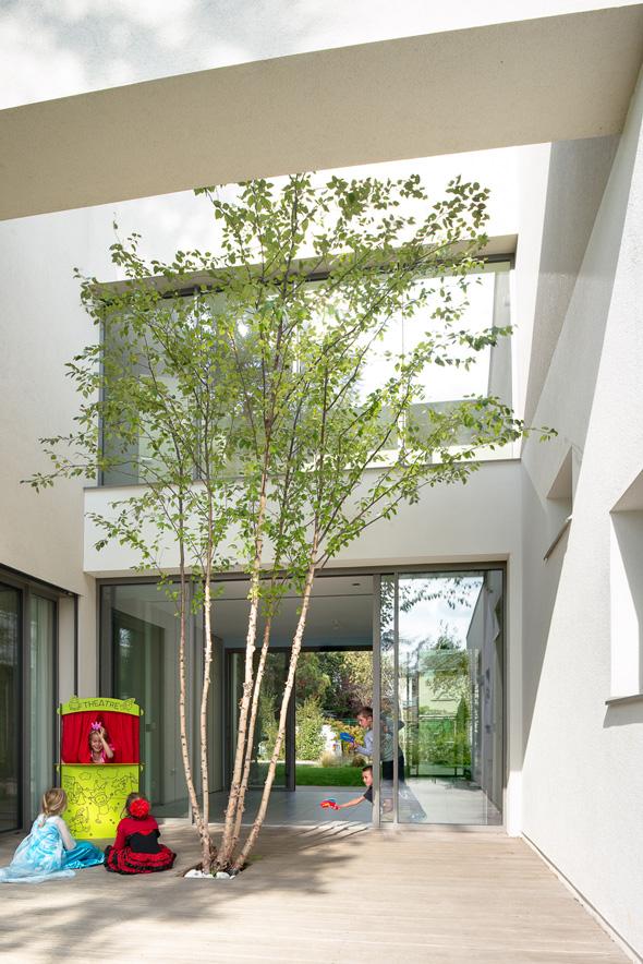 Maison à patio contemporaine sur Lyon. Patio avec terrasse et un arbre, transparence de la salle de jeu attenante.